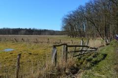 Landschaftsexkursion118
